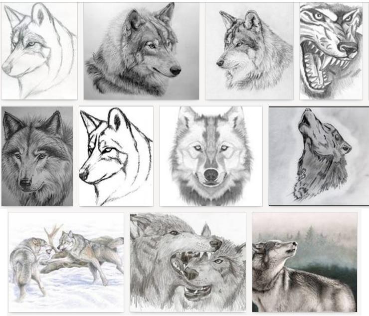 часть этих волки картинки узор как нарисовать средней части